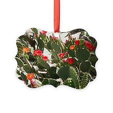 colorful cactus flowers Ornament