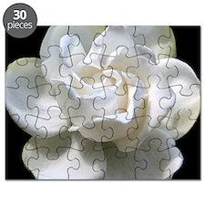GARDENIA mpad Puzzle