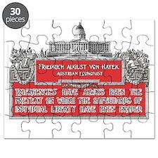 Von Hayek lights2 Puzzle