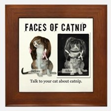 Faces of Catnip 2 Framed Tile