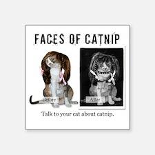"Faces of Catnip 2 Square Sticker 3"" x 3"""