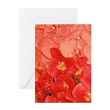 Peach Orchid Fantasy 23x35 Greeting Card