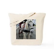 (12) mystic horse Tote Bag