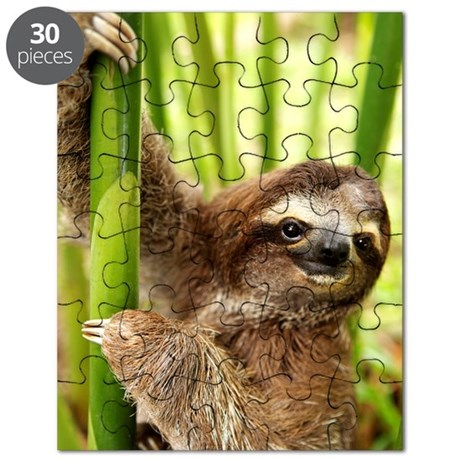 Dominick The Sloth On Puzzle