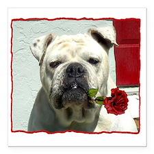 "Romantic bulldog Square Car Magnet 3"" x 3"""