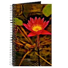 Yellow Ruben's Waterlily 5x7 Journal