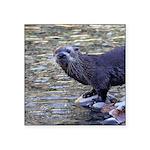 River Otter Sticker