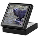 River Otter Keepsake Box
