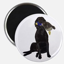 lab with duck Magnet