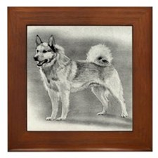 Norwegian Buhund Dog Framed Tile