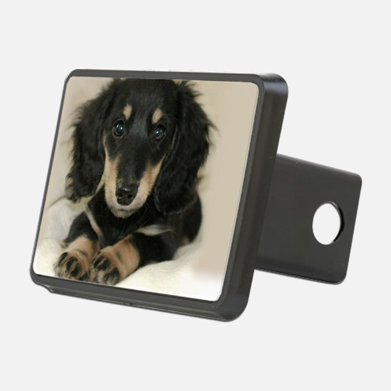 long hair black doxie 16x1 Hitch Cover