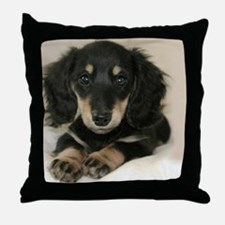 long hair black doxie 16x12 Throw Pillow