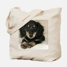 long hair black doxie 16x12 Tote Bag