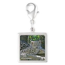 Snow Leopard Cub Silver Square Charm