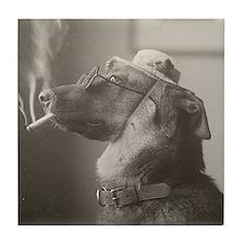 Portrait of a Dog, 1923 Tile Coaster