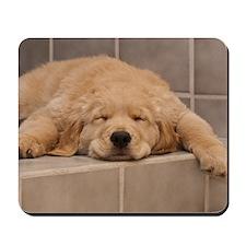 Golden Retriever Puppy Mousepad