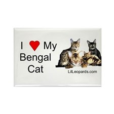 Cute Bengal cats Rectangle Magnet