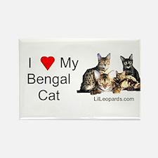 Cute Bengal Rectangle Magnet