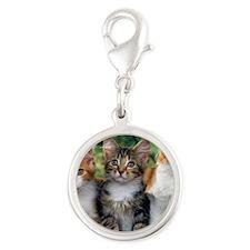 Tthree_kittens Silver Round Charm