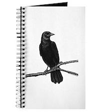 Black Crow ~ Journal