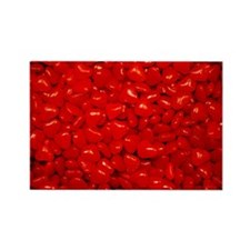 candy-hearts-small_8x12 Rectangle Magnet