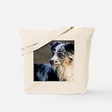 (4) aussie looking left Tote Bag