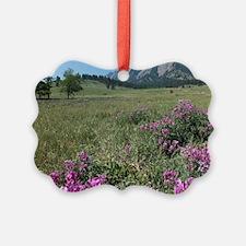 Chautauqua Park Boulder Colorado  Ornament
