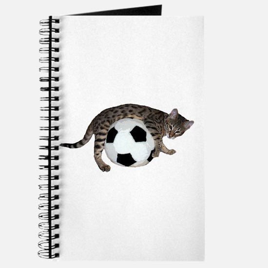 Cat Soccer - Journal