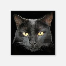 Dangerously Beautiful Black Cat Square Sticker 3&Q