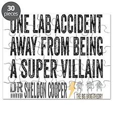 Lab Accident Super Villain Puzzle