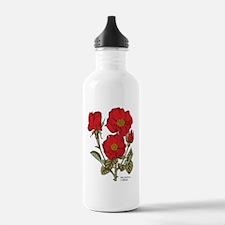 Polyantha Red Roses Water Bottle