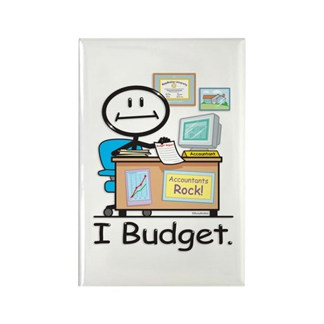 Accountant Budget Rectangle Magnet (10 pack)