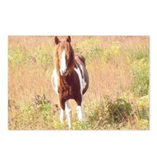 Pretty Paint Pony Postcards (Package of 8)