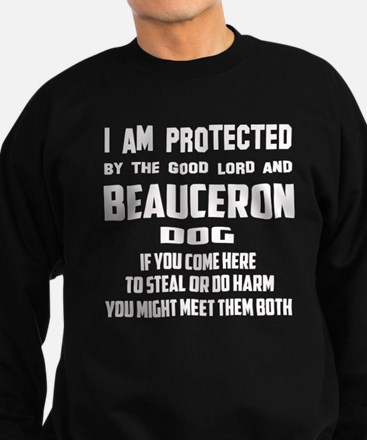 I am protected by the good lord Sweatshirt (dark)