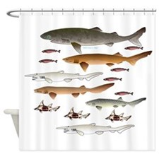 Deep Sea Sharks School 2 c Shower Curtain