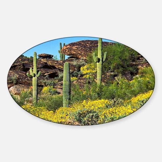 Four Saguaros & Wildflowers Sticker (Oval)