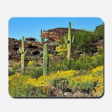 Four Saguaros & Wildflowers Mousepad
