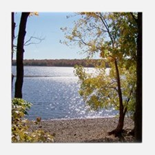 Lake View Scenery Tile Coaster