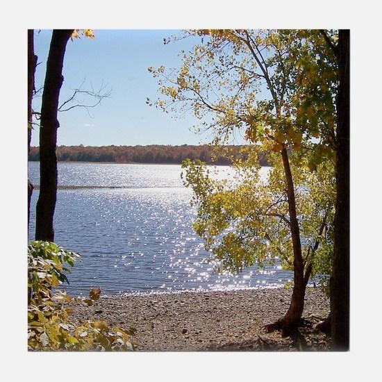 Lake View Scenery Tile Coaster
