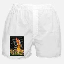 MidEve-BorderT1.png Boxer Shorts