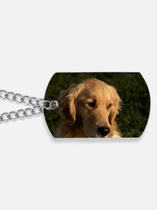 (10) golden retriever head shot Dog Tags