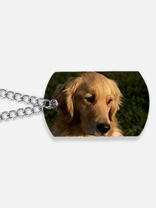 (2) golden retriever head shot Dog Tags