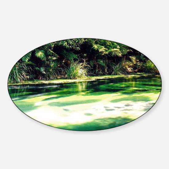Terawera-Falls-River-183-14 no fram Sticker (Oval)