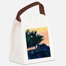 torreypine9x12 Canvas Lunch Bag