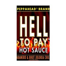 HELL TO PAY-TS Decal