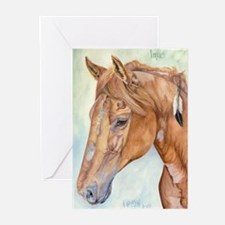 Imus Greeting Cards (Pk of 10)