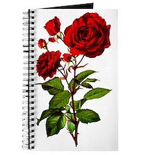 rose_short-tr Journal