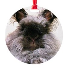 rabbit calendar Ornament