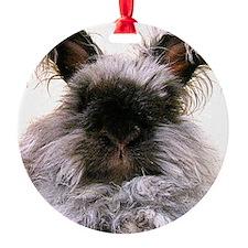 rabbit calendar Round Ornament