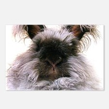 rabbit calendar Postcards (Package of 8)